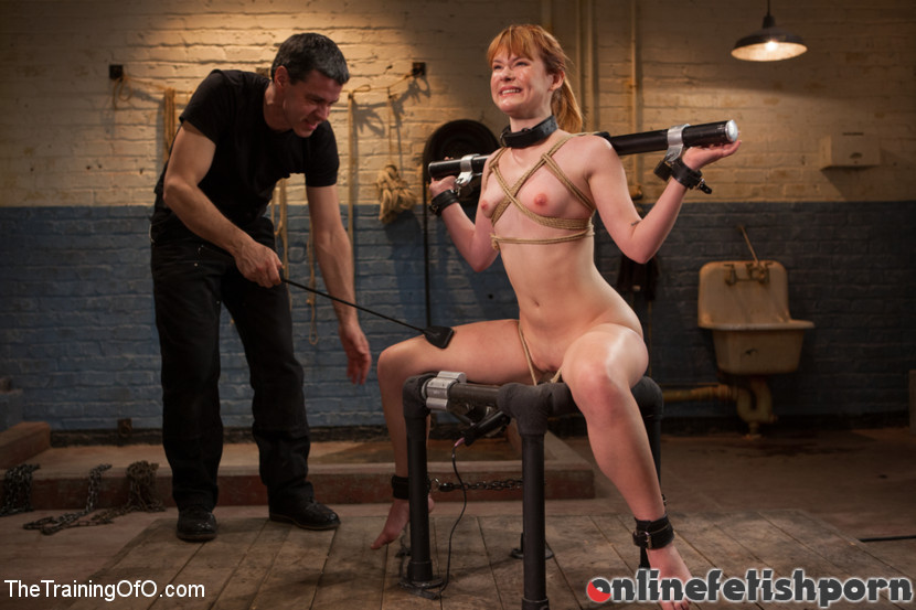 Thetrainingofo.com – The Training of Claire Robbins,.. Owen Gray & Claire Robbins 2013 Collar