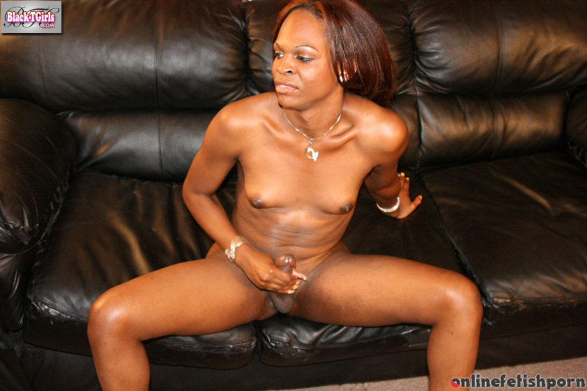 Blacktgirls.com – Chocolate Paradise Paradise 2007 Transsexual