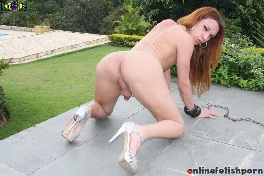 Brazilian-transsexuals.com – Carol Vendramini Gets Naughty! Carol Vendramini 2008 Transsexual