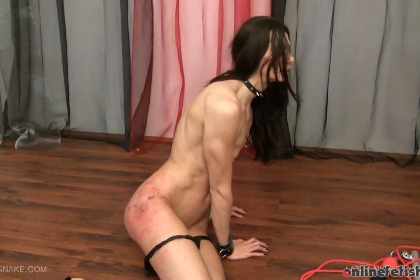 Queensnake.com – LATEX NIGHT WHIPPING Queensnake  Whipping