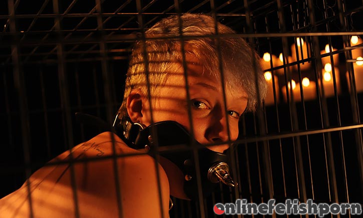 Wasteland.com – Kat in a Cage  2019 Restraints