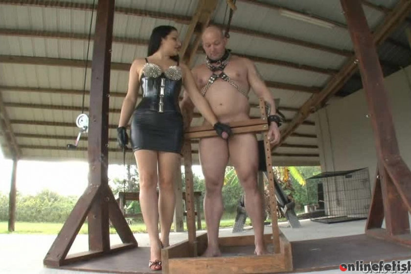 Clubdom.com – Mistress Lacy Torments His Cock Michelle Lacy 2013 CBT